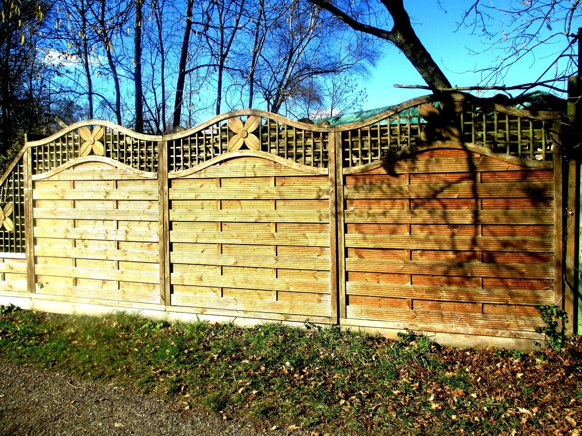 Do You Want To Give Your Backyard A New Look? Find Out ...